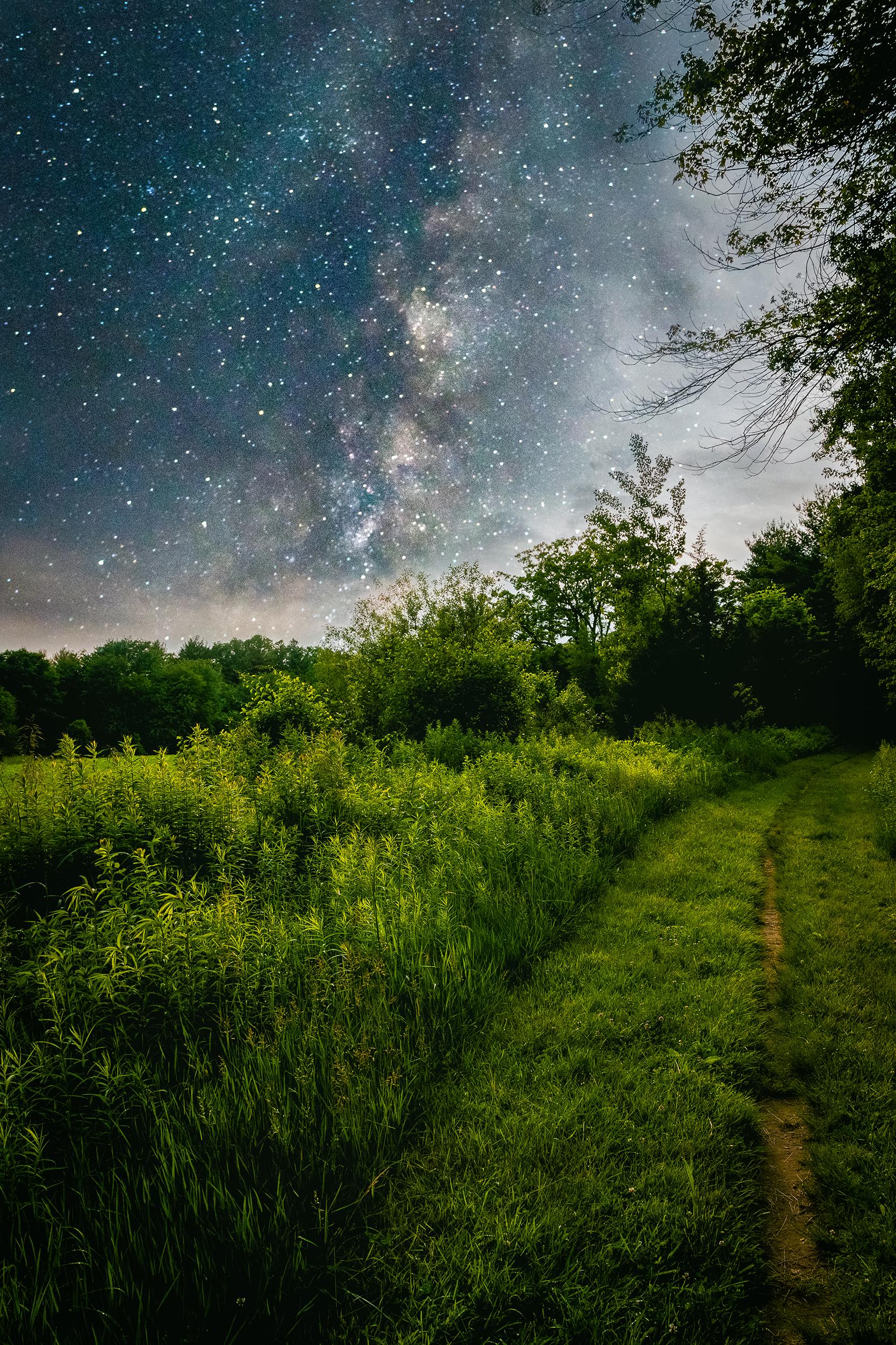 Matt Grandbois Photography — painted_grass-3